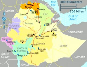 Ethiopian War: Fight All Nationalism and Patriotism